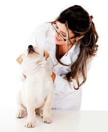 Especialidades veterinarias